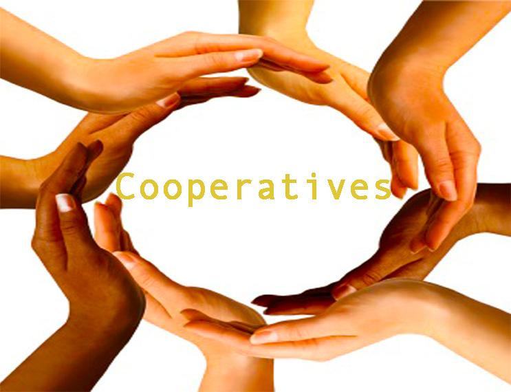La constitution d'une coopérative au Maroc