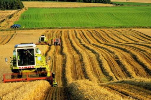 Demande d'eclaircissernent concernant la notion de chiffre d'affaire exonère dans le cas des sociétés agricoles